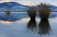 musovske_jezera_g