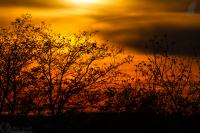 podzimni_zapad_slunce_g