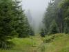 orlicke_hory_pl_g