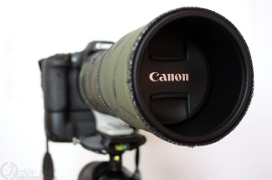 Canon 300 mm f4L IS USM