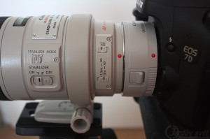 Canon EF300mm f4L IS USM plus Canon extender 1.4x III