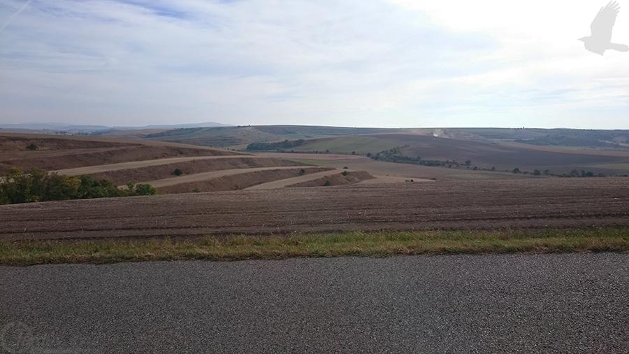 Pohled do krajiny